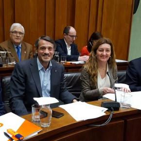 Cs de l'Hospitalet consigue que se apruebe su propuesta para fomentar la vivienda de alquiler social