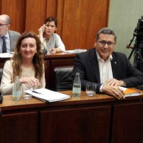 Cs lamenta que el Gobierno de Núria Marín se desentienda de los vecinos que sufren el acoso de bandas organizadas que ocupan viviendas sociales públicas