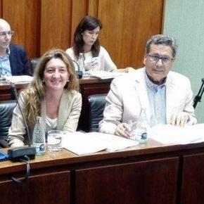 Cs consigue que el Pleno apruebe ampliar y publicitar los procesos de selección de los Planes de Ocupación pese al rechazo del PSC