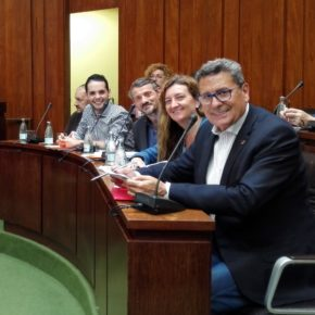 Cs consigue que el Pleno del Ayuntamiento apruebe adoptar medidas urgentes para mejorar la convivencia en el entorno del Parque de los Pajaritos