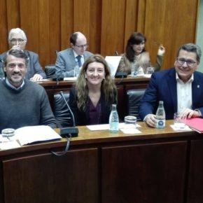 Cs l'Hospitalet critica que la alcaldesa Núria Marín prioriza los recursos municipales en proyectos privados en vez de políticas sociales