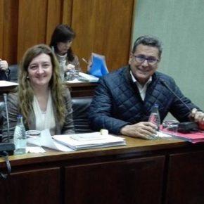 Cs celebra que Núria Marín pierda la votación y el pleno municipal apruebe recuperar los servicios funerarios más económicos (incluye VÍDEO)