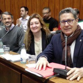 Cs consigue que el Ayuntamiento apruebe medidas para mejorar las condiciones de vida de las personas con diversidad funcional de l'Hospitalet