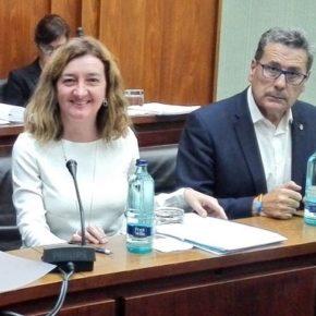 El PSC de Núria Marín rechaza la propuesta de Cs para revertir el modelo de ciudad de dos velocidades en l'Hospitalet