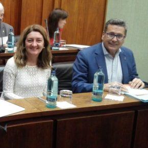 Aprobada por unanimidad la propuesta de Cs l'Hospitalet para fomentar el deporte inclusivo y de base social